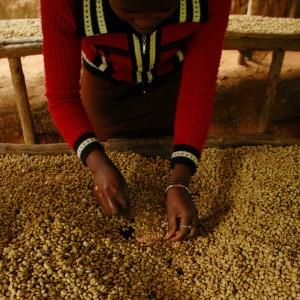 Rwanda Muhondo